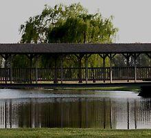 Bridge Over Still Waters by sheena2015