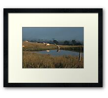 The Beauty of a Rural Morning Framed Print