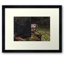 Childs Grave Framed Print