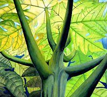 Papaya Tree  by kevin smith  skystudiohawaii