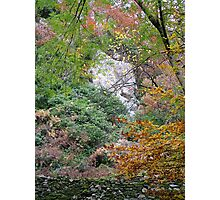 Waterfall, Lake District, Ambleside Photographic Print