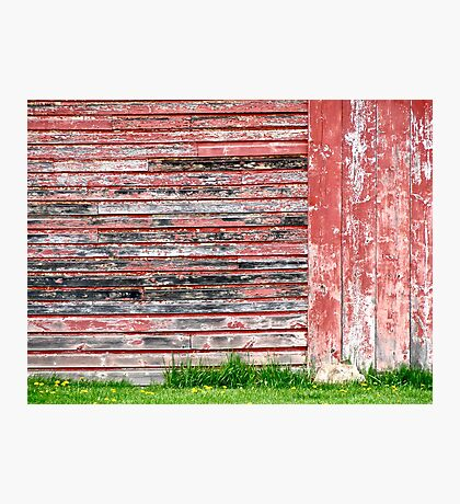 Black, White and Red All Over Photographic Print