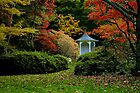 The Gazebo ... Autumn in Mt Wilson by Rosalie Dale