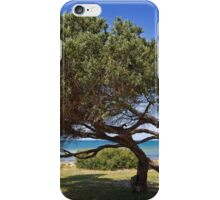 Follow the wind iPhone Case/Skin