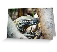 Baby Komodo Dragon Greeting Card