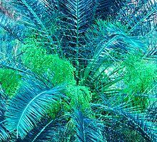 Lacy Blue Palms by Rosalie Scanlon