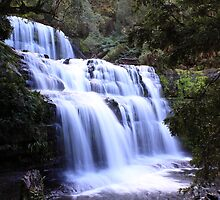 Liffey Falls Close Up by tinnieopener