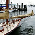 Wishing You Smooth Sailing~ Annapolis, Maryland  by AngieDavies