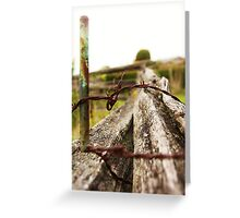Fence: Stake, thorns and an old tree Greeting Card