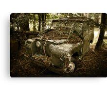 Rover grown over Canvas Print