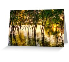 Tree Flood Greeting Card