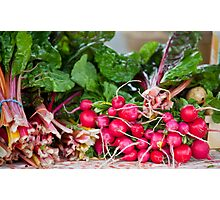 Radishes & Rhubarb Photographic Print