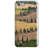The Contours of Land, La Foce, Tuscany, Italy iPhone Case/Skin