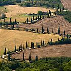 The Contours of Land, La Foce, Tuscany, Italy by Andrew Jones