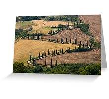 The Contours of Land, La Foce, Tuscany, Italy Greeting Card