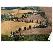 The Contours of Land, La Foce, Tuscany, Italy Poster