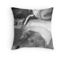 Fur Pillow Throw Pillow