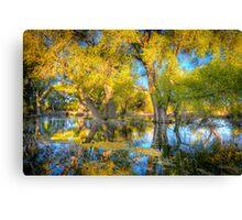 Swamp Mirror Canvas Print