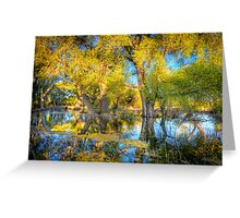 Swamp Mirror Greeting Card