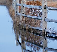 Fence Reflections at Assateague by Jeff Holcombe