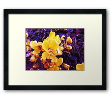 Catch Me Now.   Framed Print
