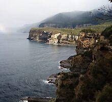 Rugged Coastline by michellerena