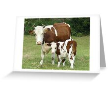 Mother and Son 2 Greeting Card