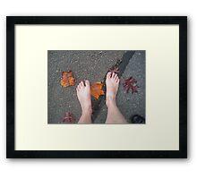 Autumn footsteps Framed Print