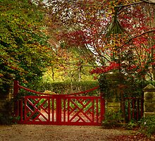 The Large Red Gate ... Mt Wilson in Autumn by Rosalie Dale