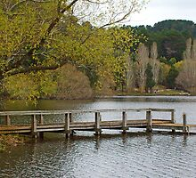 Jetty on the Lake by Cecily McCarthy