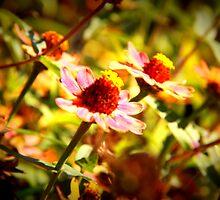 Flower Child by Megan Martin