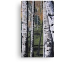 Forest Birches Canvas Print