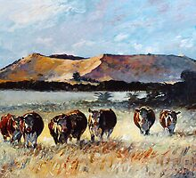 Mount Schank Herefords, South Australia by Pieter  Zaadstra