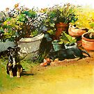 Flowerpot Pups by Pieter  Zaadstra