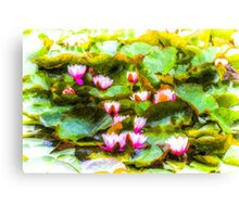 Water Lily Art Canvas Print