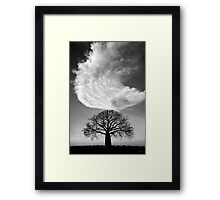 Sky Tree Framed Print