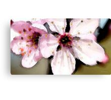 Cherry Blossoms - Soft Pink Floral Canvas Print