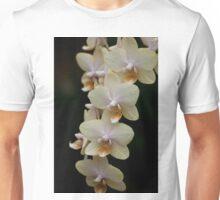 Phalaenopsis - Gold Unisex T-Shirt