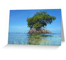 Islet of mangrove with blue sky Greeting Card