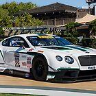 Bentley Continental GT3 by David Coyne