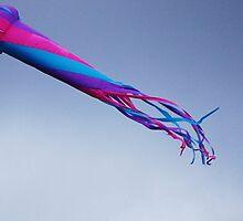 Flying In The Wind by Jonice