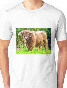A Handsome Fellow Unisex T-Shirt