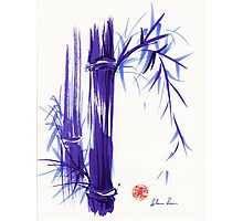 'Spring' Original ink and wash lavender bamboo painting Photographic Print