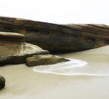 Windansea Beach CALIFORNIA by CaptureLight