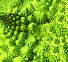 Romanesco broccoli  by Brünø Beach .