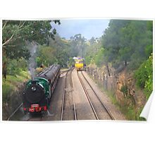 Thirlmere Steam train @ Picton Poster