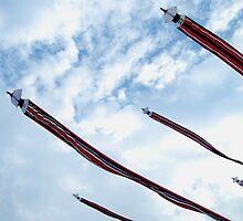 Kites by fixcreator