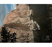 Fallen Rock- Willow Lake Photographic Print
