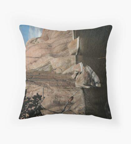 Fallen Rock- Willow Lake Throw Pillow