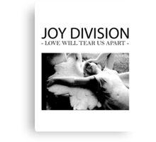 Joy D Canvas Print